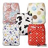 LittleBloom, Reusable Pocket Cloth Nappy, Fastener: Popper, Set of 5, Patterns 532, With 5 Bamboo Inserts, 6580