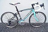 世田谷)GARNEAU(ガノー) REN20(REN20) ロードバイク 2014年 350サイズ