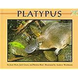 Platypus (Mondo Animals)