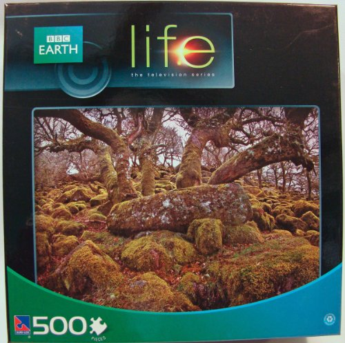 BBC Earth Life 500 Piece Jigsaw Puzzle: Dartmoor National Park
