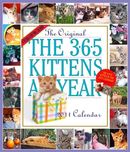 365 Kittens a Year Calendar 2011
