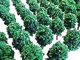 Nゲージ ジオラマ 模型用樹木4センチ 100本 セット