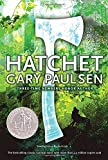 img - for Hatchet book / textbook / text book