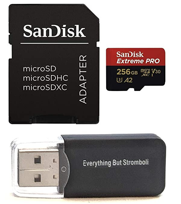 SanDisk 256GB Micro SDXC Memory Card Extreme Pro Works with GoPro Hero 8 Black, Max 360 Action Cam U3 V30 4K A2 Class 10 (SDSDQXCZ-256G-GN6MA) Plus 1 Everything But Stromboli (TM) MicroSD Card Reader (Color: Class 10 256GB)