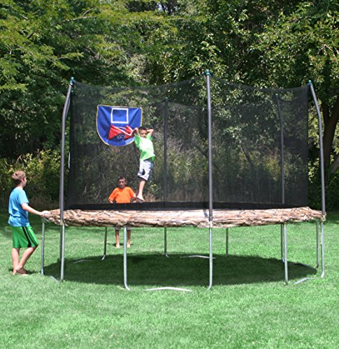 Skywalker Trampolines Jump N Dunk Trampoline With Safety