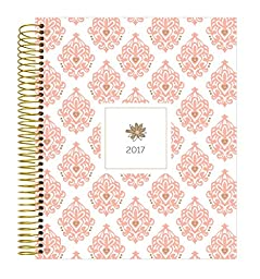 bloom daily planners 2017 Calendar Year Vision Planner (January 2017 - December 2017) - Monthly and Weekly Column View Planner - Pink and Gold - 7.5\
