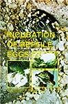 Incubation of Reptile Eggs: Basics, G...