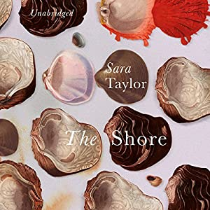 The Shore Audiobook