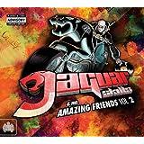 Jaguar Skills and His Amazing Friends: Volume 2