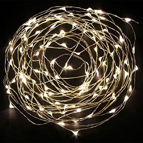 KCRIUS(TM) 33Ft Warm White (Silver Coating) Copper Wire LED Starry Lights, 5V DC LED String Light, Includes Power Adapter, with 100 Individual Leds Color: Warm White(Silver) Size: 33ft Model: KCRIUS (Hardware & Tools Store)
