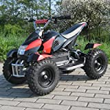 Miniquad Elektro Cobra Kinder 800 Watt ATV Pocket Quad...