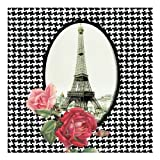 Paperproducts Design 7745 20-Pack Tour Parisienne Eiffel Tower Paper LUNCHEON Size Napkin, 6.5 by 6.5 Inches
