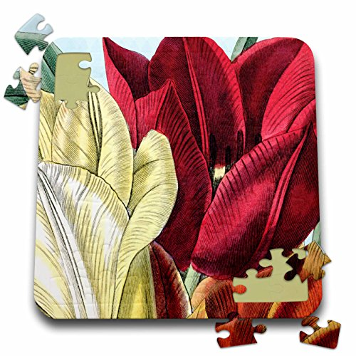 PS Vintage - Vintage Tulip Flowers - 10x10 Inch Puzzle (pzl_203816_2)