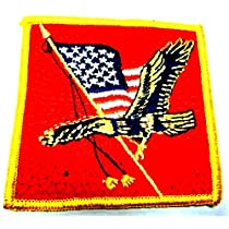 American Flag Patch~Eagle Patch~Bald Eagle and The American Flag [Apparel]
