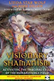 Visionary Shamanism: Activating the Imaginal Cells of the Human Energy Field