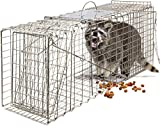 "OxGord Live Animal Trap 32"" X 12"" X 12"" Catch Release Humane Rodent Cage for Rabbits, Stray Cat, Squirrel, Raccoon, Mole, Gopher, Chicken, Opossum, Skunk & Chipmunks Steel Outdoor Professional Grade"