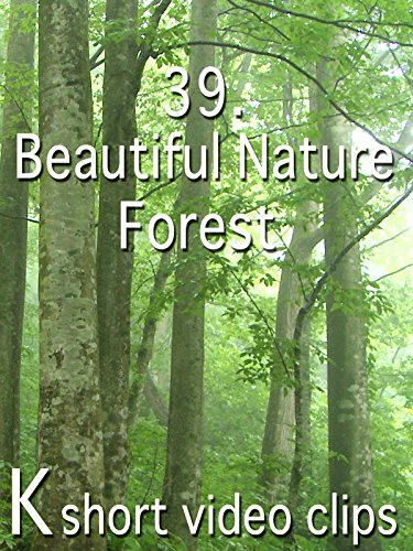 Clip: 39.Beautiful Nature--Forest