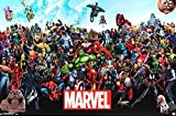 Stan Lee Autographed/Signed Marvels Universe Full Size Poster
