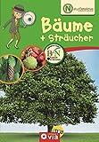 Naturdetektive: Bäume & Sträucher: Wissen und Beschäftigung für kleine Naturforscher