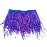 wanjin Ostrich Feathers Trims Fringe with Satin Ribbon Tape for Dress Sewing Crafts Costumes Decoration Pack of 2 Yards (Royal blue) (Color: 36#-Royal blue)