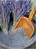 French Lavender Super Blue - Loose Flower Buds - Per Pound