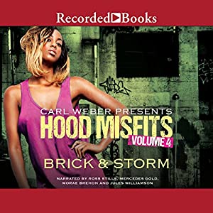 Hood Misfits, Volume 4 Audiobook