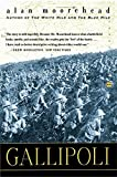 img - for Gallipoli (Perennial Classics) book / textbook / text book