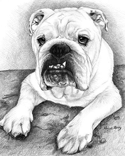 english-bull-dog-8x10-art-print-by-wendy-hogue-berry