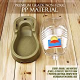 My Dog Water Bowl Automatic | Superb Pet Waterer with Easy Refill System for The Best Small Dogs and Cats Hydration Solution | Extremely Sturdy and Nontoxic PP Material | Dishwasher Safe | Coffee | 610