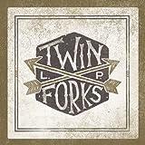 Twin Forks (Vinyl)