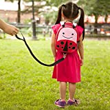 Skip Hop Zoo Little Kid and Toddler Safety Harness Backpack, Ages 2+, Multi Livie Ladybug