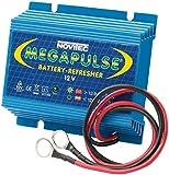 Megapulse 655000032 Batería 12V