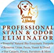 Enzyme Cleaner, Pet Stain Remover, Odor Eliminator, Best Carpet Stain Remover, Pet Odor Eliminator, Stain Remover, Odor Neutralizer, Cat Urine Smell - Cleaner - Eliminator, Sunny and Honey