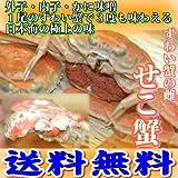訳あり 兵庫県浜坂漁港水揚げ せこ蟹 (松葉蟹の雌) サイズ不揃い 10枚入 ボイル(茹でてお届け)