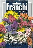 Franchi Statice a grandi fiori multicolor