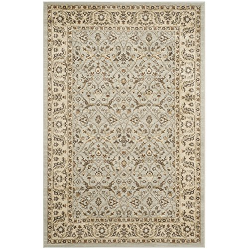 Safavieh Florenteen Collection FLR126-8012 Grey and Ivory Area Rug, 8 feet by 10 feet (8' x 10')