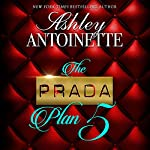 The Prada Plan 5   Ashley Antoinette