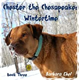 Chester the Chesapeake: Wintertime
