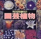 園芸植物 (山渓カラー名鑑)