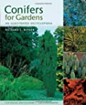 Conifers for Gardens: An Illustrated...