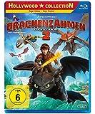 Drachenzähmen leicht gemacht 2 [Blu-ray]