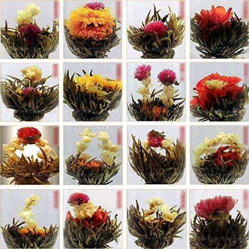 huntgold-10ps-artistique-fleur-de-the-boule-a-the-de-fleur-chinoise