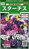 サカタのタネ 実咲花6486 スターチス 切り花用美色混合 00906486