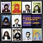 Fuzzy Logic  + bonus CD