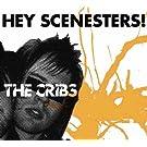 Hey Scenesters