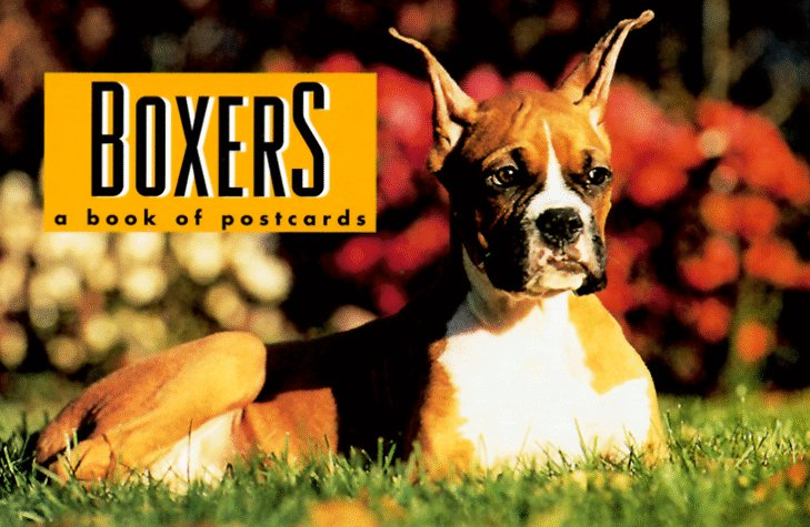 Boxers, Andrews McMeel Publishing