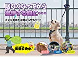 Protex Pawz Safespot Locking Dog Leash - Black