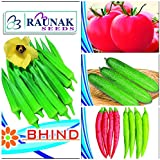 RAUNAK SEEDS VEG SEEDS COMBO-TOMATO, BHINDI, KHEERA AND CHILLI (4 PACKETS/30 SEEDS EACH) SOLD BY SUPER AGRI GREEN