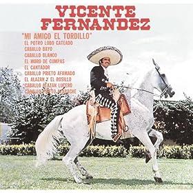 Amazon.com: Caballo Alazan Lucero: Vicente Fernández: MP3 Downloads