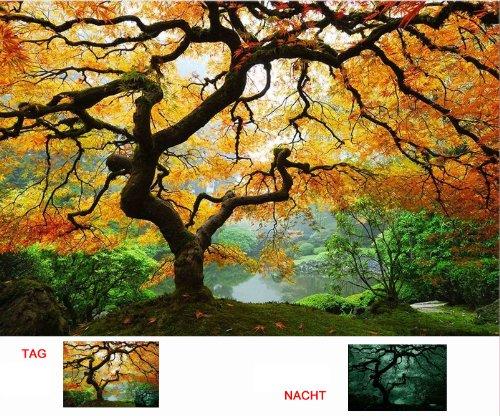 startonight-canvas-wall-art-maple-tree-nature-usa-design-for-home-decor-dual-view-surprise-artwork-m
